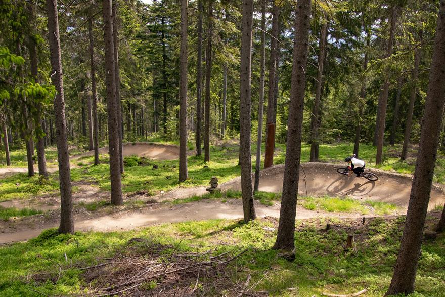 MTB Trail in Niederösterreich