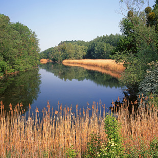 Donau-Auen National Park, Lower Austria