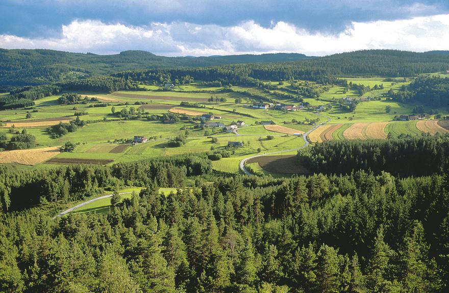 Waldviertel Landschaft bei Grosspertholz