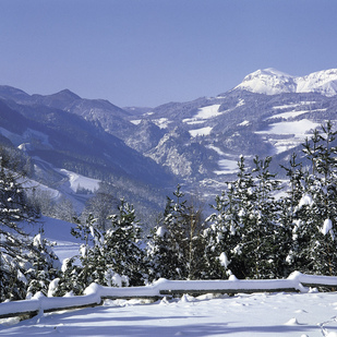 Semmering area / Winter landscape