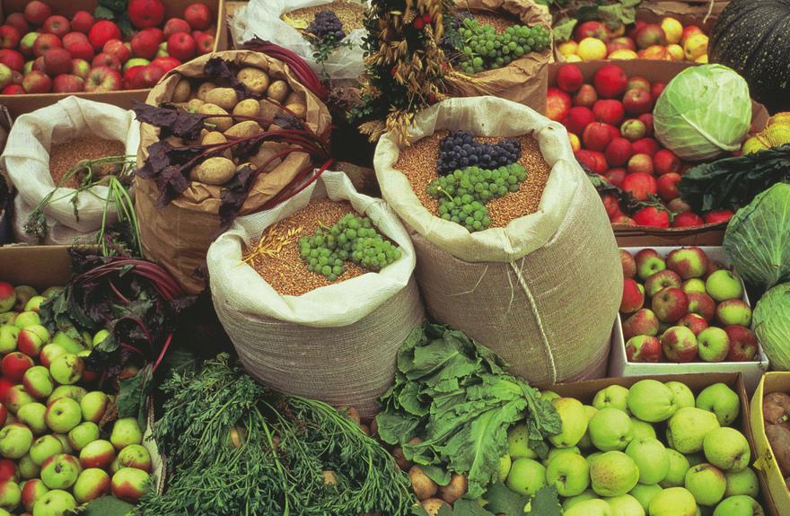 Bio - Marktstand