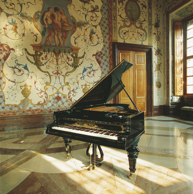 Inside the Belvedere Palace / piano