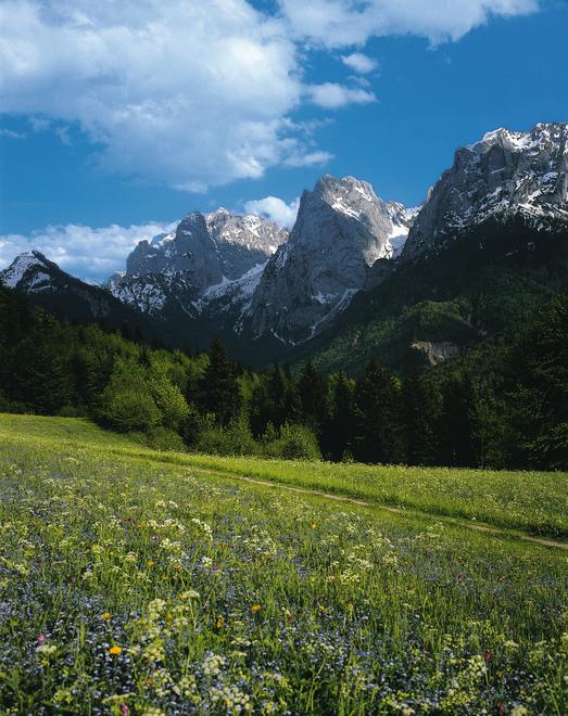 Wilder Kaiser / Kaisergebirge / vom Kaisertal bei Kufstein aus / Tirol