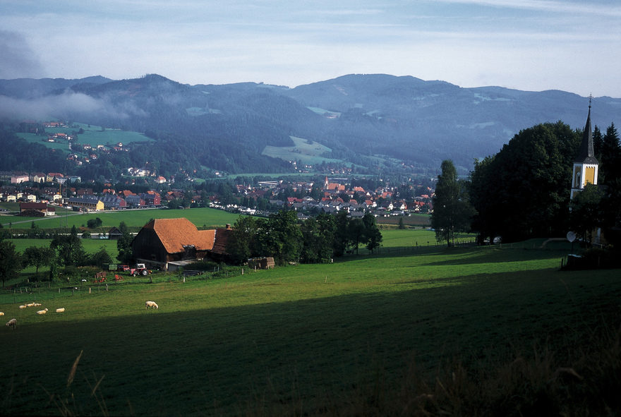 Valley of the Muerz near Krieglach / Styria