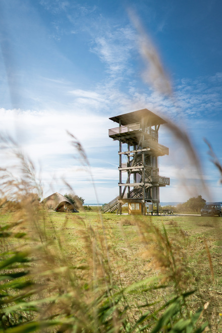 Observation tower in the Neusiedler See National Park