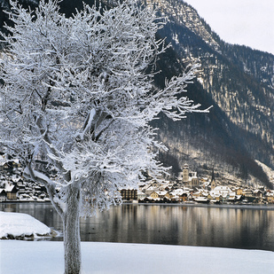 Hallstatt  in winter Salzkammergut   Upper Austria